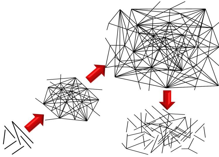 Vester - Vernetzung - Chaos