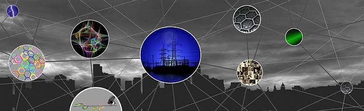 Logo Vernetzung und Komplexität