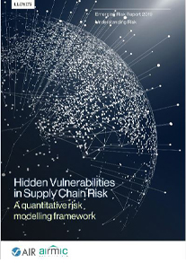 Hidden Vulnerabilities in Supply Chain Risk