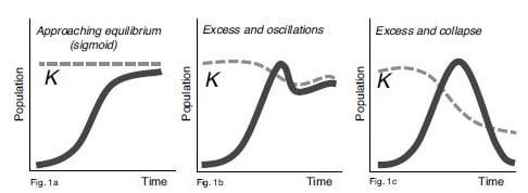 Reaktion eines lebenden Systems auf exponentielles Wachstum
